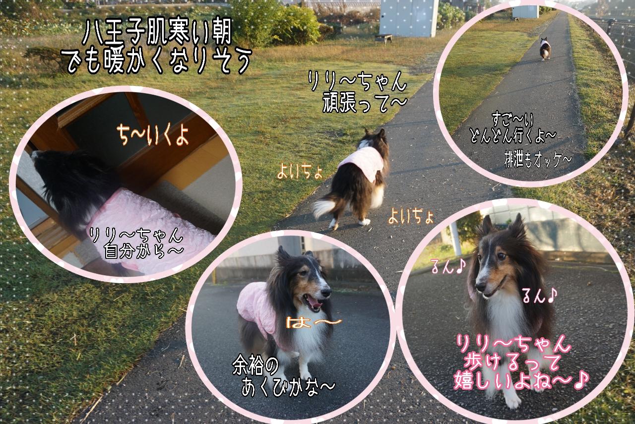 2014-10-26-07-09-22_deco.jpg