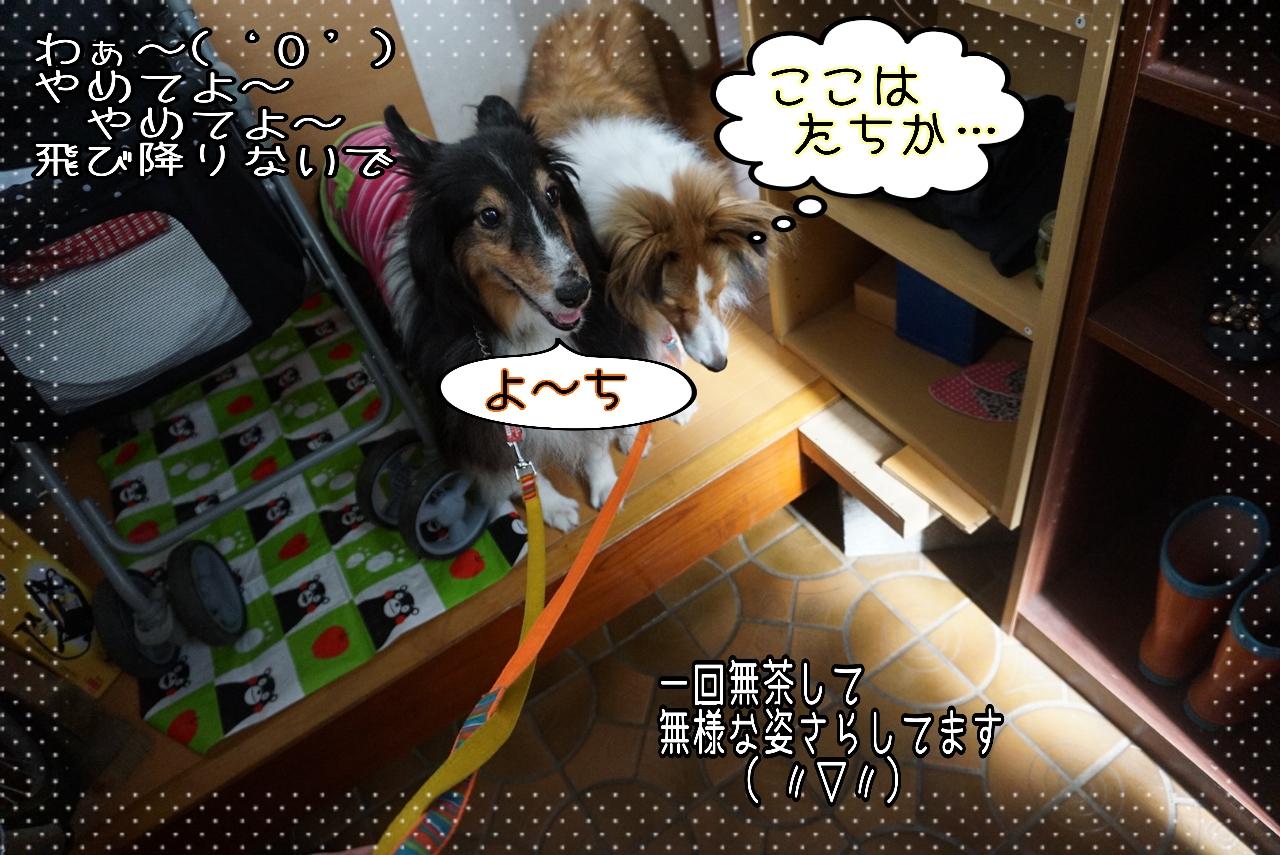 2014-10-27-11-02-58_deco.jpg