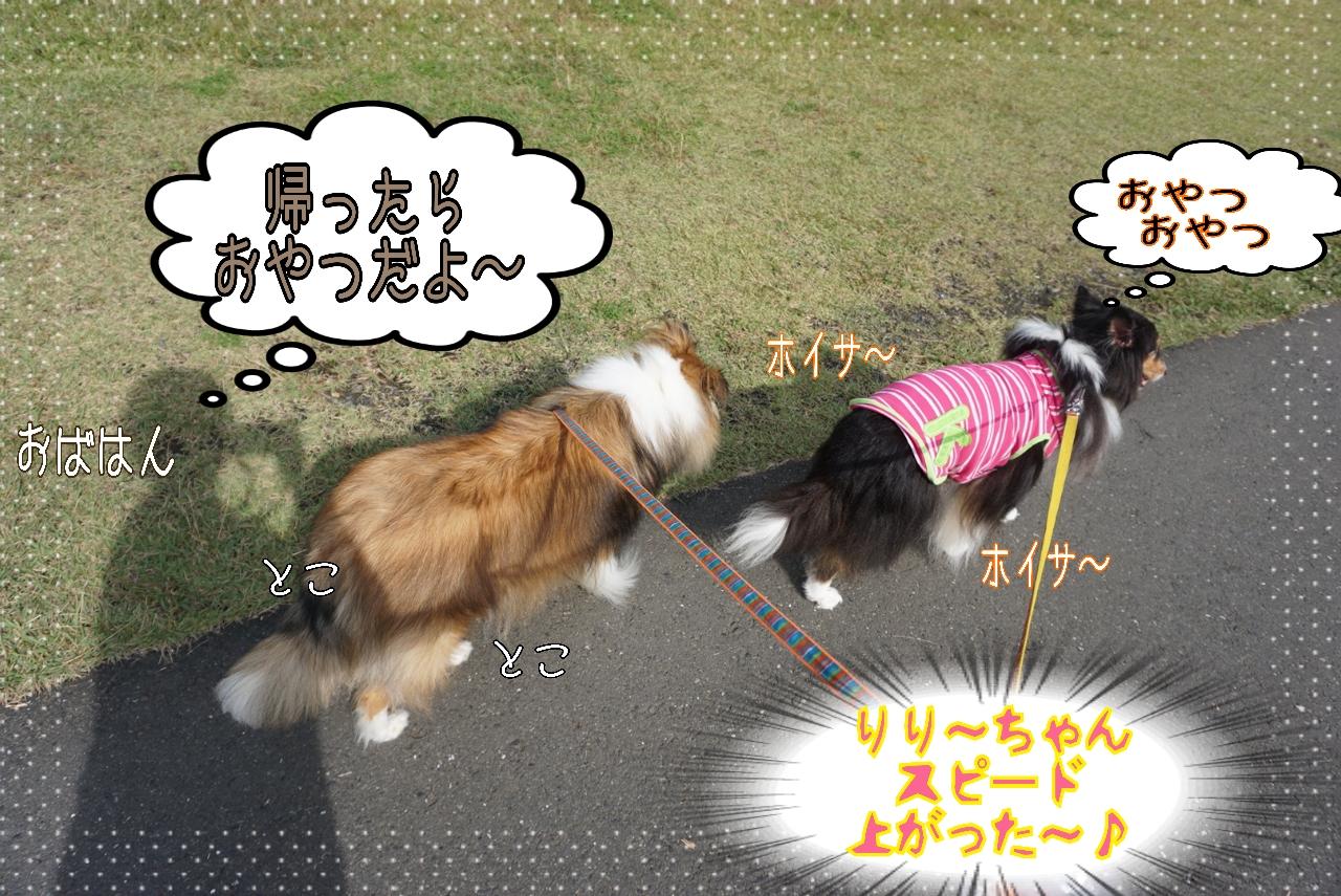 2014-10-27-12-12-41_deco_20141027142403c8d.jpg