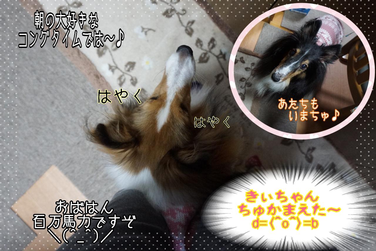 2014-10-29-12-02-03_deco.jpg