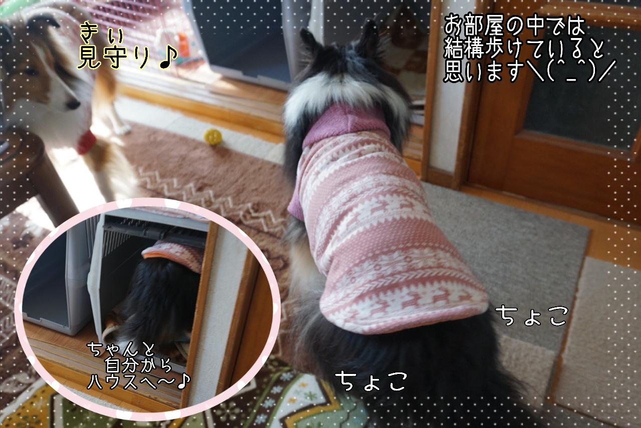 2014-10-29-12-48-02_deco.jpg