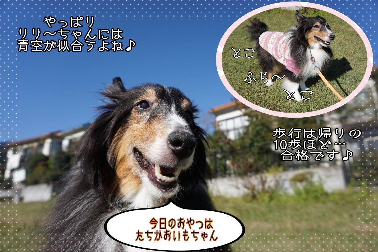 2014-10-29-13-10-58_deco.jpg