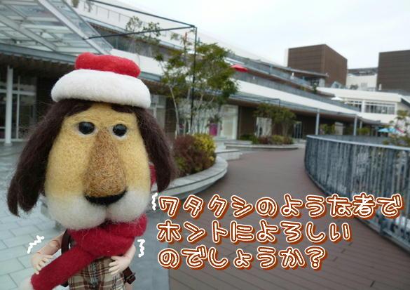 F2_20121217143604.jpg