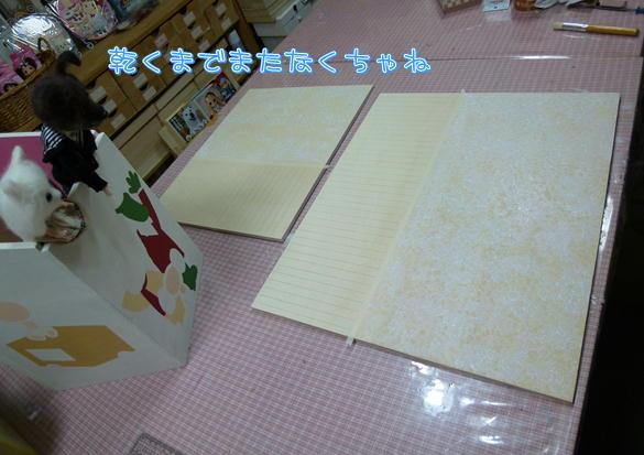 F3_20121206215425.jpg