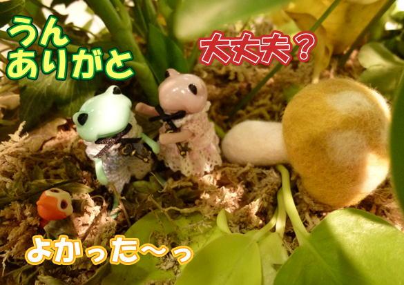 f21_20121113220609.jpg