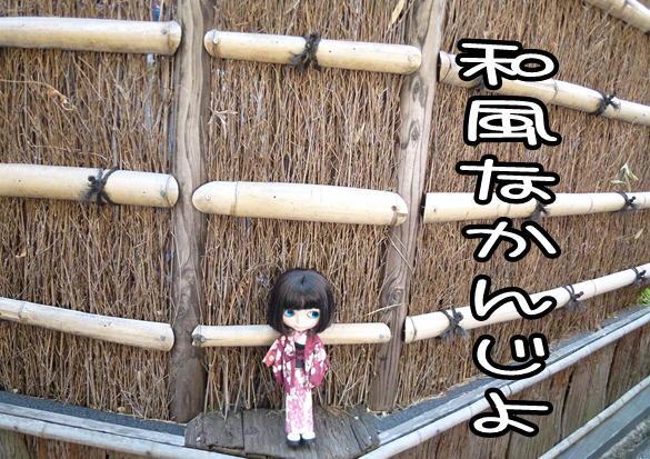 f4_20120420130732.jpg