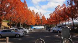 鏡山公園20121121-1