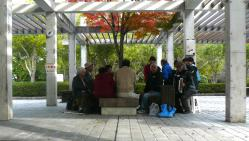 鏡山公園20121121-4