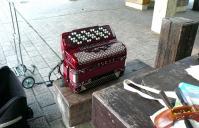 鏡山公園でボタンアコ練習20120622-2