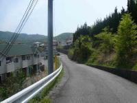 散歩20120429-1