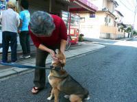 散歩20120923-5