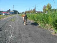 散歩20120927-2