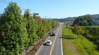 散歩20120927-5
