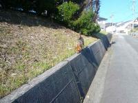 散歩20120928-1