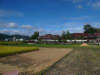 散歩20120930-4