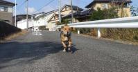 散歩20121025-1