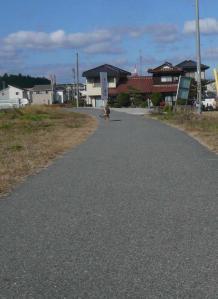 散歩20121121-3