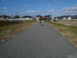 散歩20121121-4
