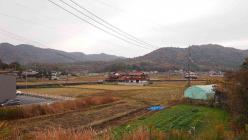 散歩20121123-3