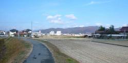散歩20121125-4