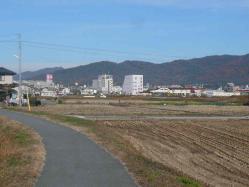 散歩20121128-4