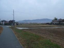 散歩20121129-4