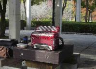 鏡山公園でアコ練習20120428-2