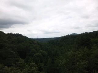 MIHO7 吊り橋からのロケーション