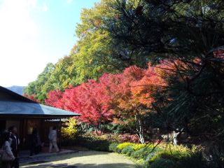北山緑化公園5 北山山荘2