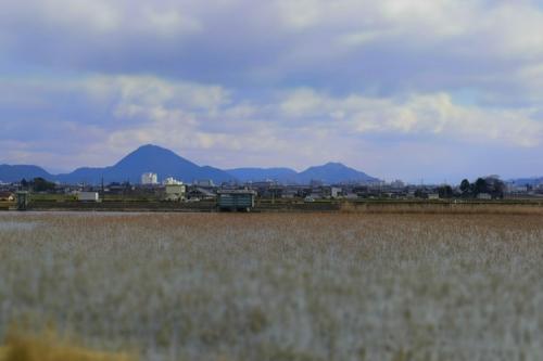 mizunomori_14_1_22_16.jpg