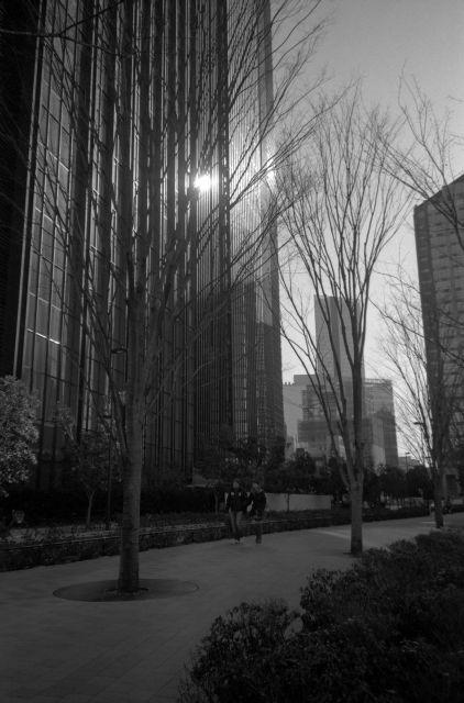 冬景色2013-06a