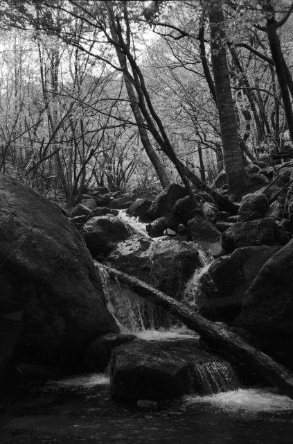 深山幽谷25a