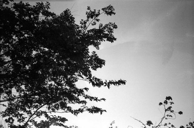 深山幽谷26d