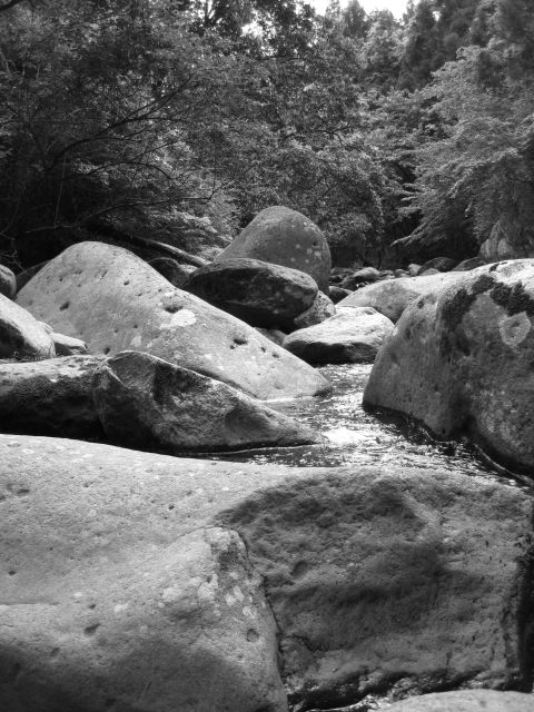 深山幽谷29d