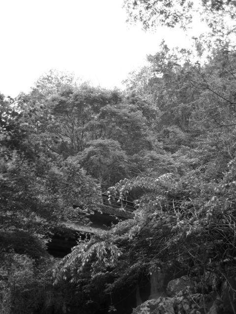 深山幽谷29a