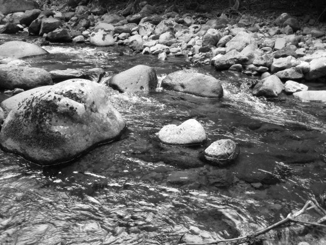 深山幽谷29b