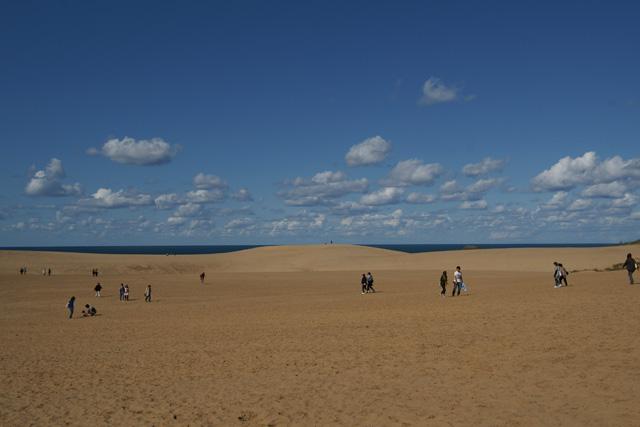 砂丘を散策