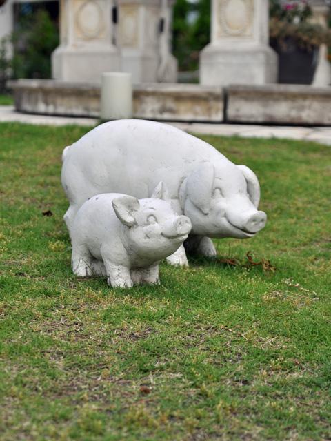 豚の親子?