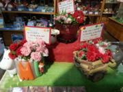 ふなピー魚町銀ぶら☆母の日にトトロ!20130422-1