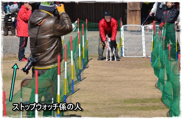 20140119-14.jpg