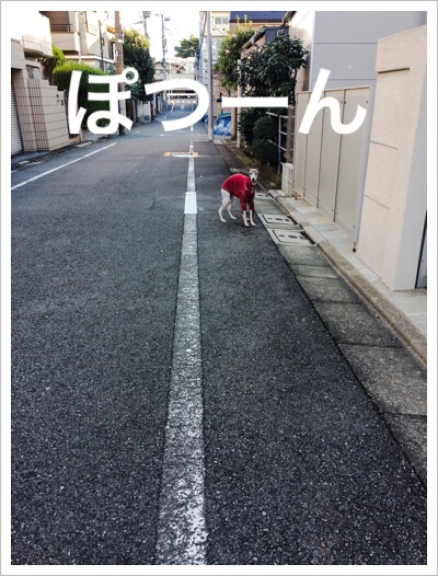 fc2blog_20141112161119d32.jpg