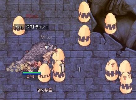 卵狩り開始!