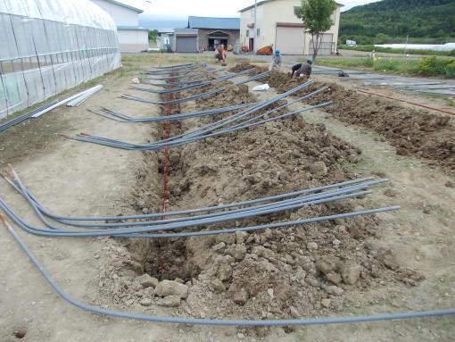 20120622_ハウス工事始まる
