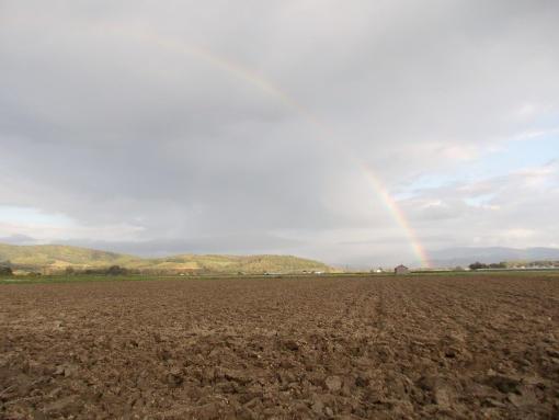 20121009_午後の虹
