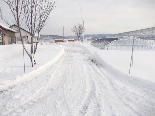 20121208_除雪後の我が家入口