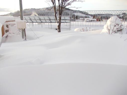 20121208_大ちゃん小屋埋まる