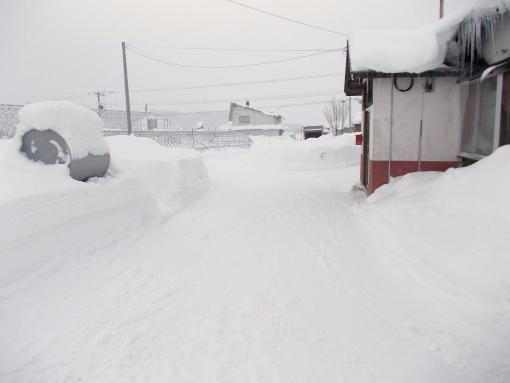 20121223_雪多いね