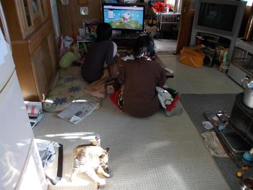 20121229_そのまんまの我が家