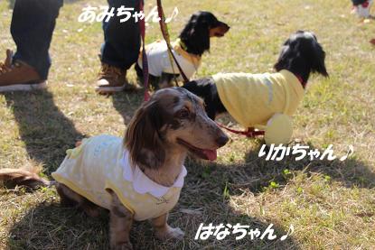 b_0361.jpg
