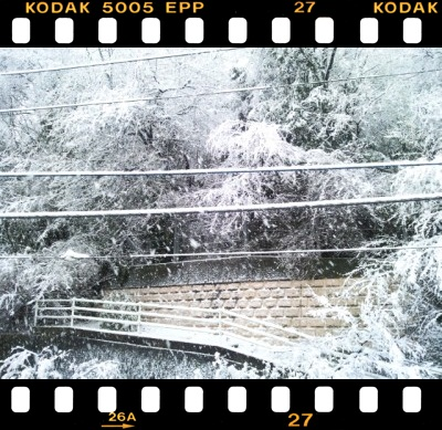 雪だよ~!ヽ(*・ω・)ノ